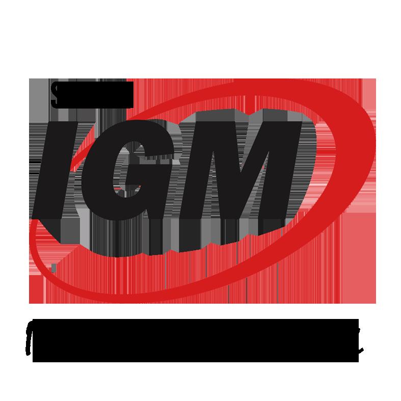 SMP LTI IGM